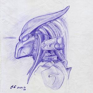 predator_001_240058.jpg