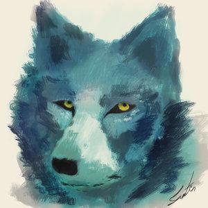 wolf_243841.jpg