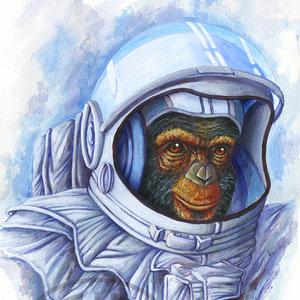 Space_Monkey_final_244793.jpg
