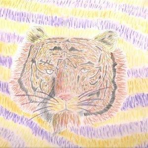 tigre_244816.jpeg