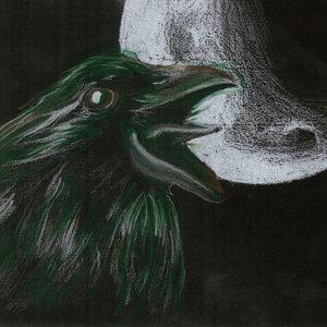 Dibujo rapido: Cuervo