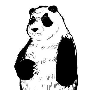 Panda_copia_270485.jpg