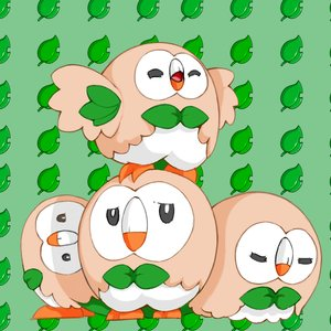 rowlet_272067.png