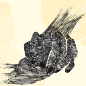 Hands_272649.jpg