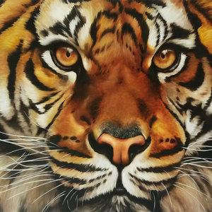 Tigre_100x70cm_272870.jpg