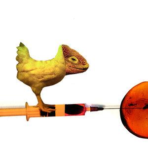 Dinosaurio_279813.jpg