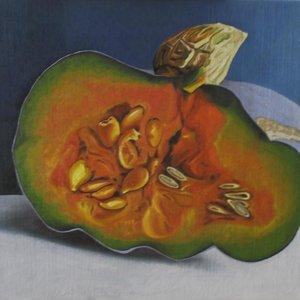 Calabaza__pumpkin__Francisco_Javier_Cerezo_Ruz__Montilla__CYErdoba__pintura__cuadro_YEleo_280983.jpg