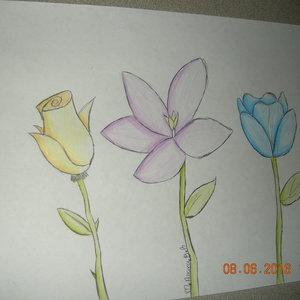 flores_281014.JPG