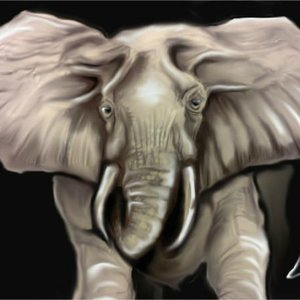 Arte_GS___Elephant_282002.jpg