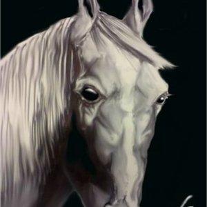 Arte_GS___Horse_282003.jpg