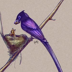 Purple_Bird_284185.jpg
