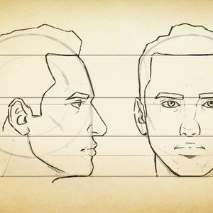 Proporciones faciales