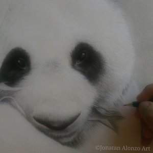 Preview__2___Panda_by_Jonatan_Alonzo_Art_288135.jpg