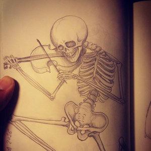 esqueleto_289768.jpg