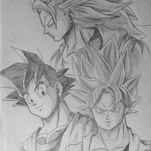 Goku_289851.jpg