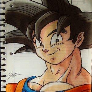 Goku_290491.JPG