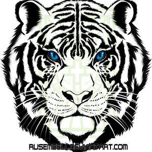 tiger_muestra_293117.png