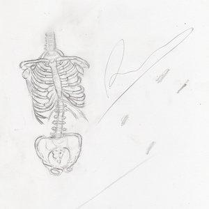 huesos005_294860.jpg