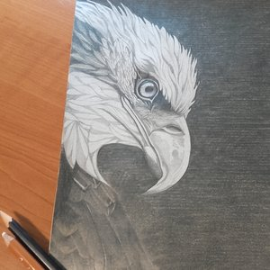 águila 2