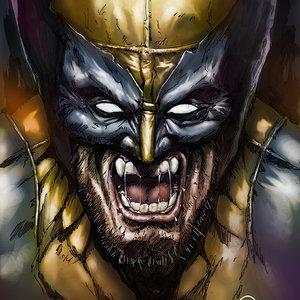 Wolverine_296952.jpg