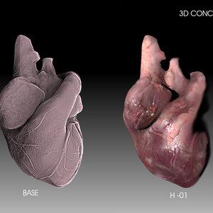 HEART_STUDIES_254204.jpg