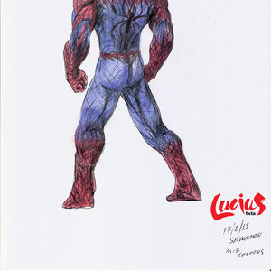 spiderman_version_libre_firmado_257350.jpg