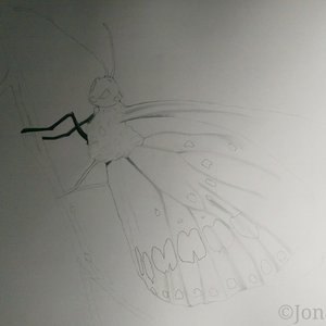 Preview_1___Butterfly_by_Jonatan_Alonzo_Art_259876.jpg