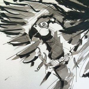 bird02_249632.jpg