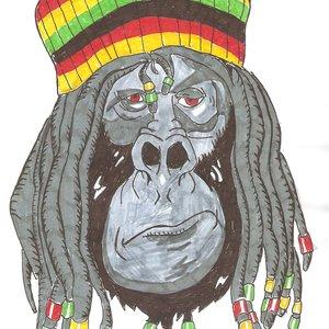 monkey rasta