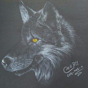 Lobo II