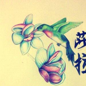 un pequeño colibrí