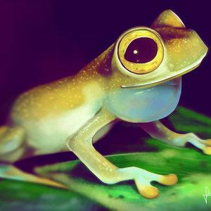 Glass_Frog_Final_314494.jpg