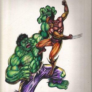 hulk_vs_wolverine_jorge_300102.jpg