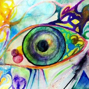 Senses' Eye