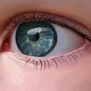 Eye_317327.jpg