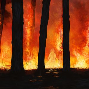 ForestFirePractice_317794.png