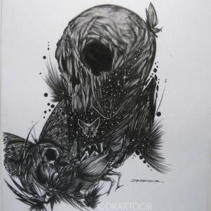 Negro Skull