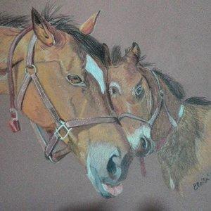 caballos_dibujo_300468.jpg