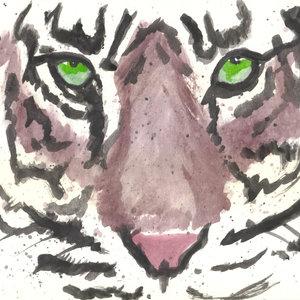 tigre04_319982.jpg