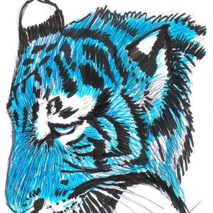 tigre05_319981.jpg