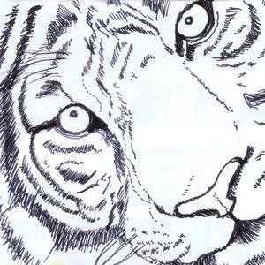 tigre02_320563.jpg