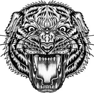 Tigre DS
