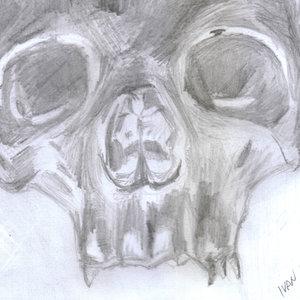 skull08_322279.jpg