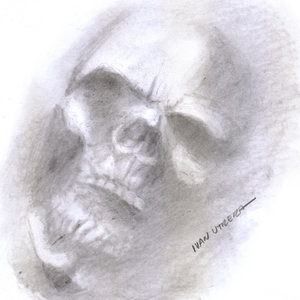 skull07_322566.jpg