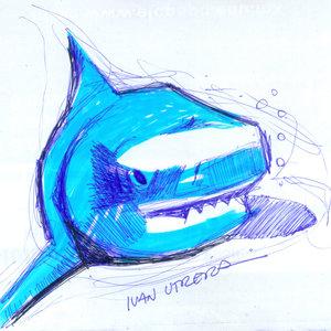 shark02_322666.jpg