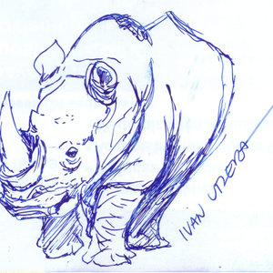 rhino_322995.jpg