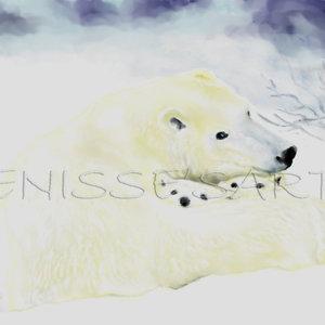 polarbearWM_323786.jpg