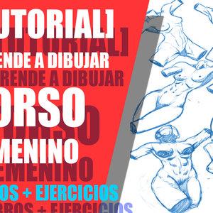 TORSO_FEMENINO_326025.jpg