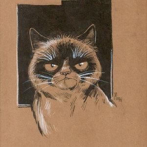 grumpy_cat_mepol_ilustraciones_301236.jpg