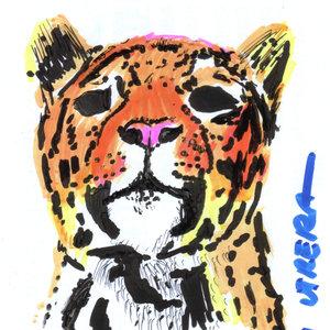 jaguar_327587.jpg